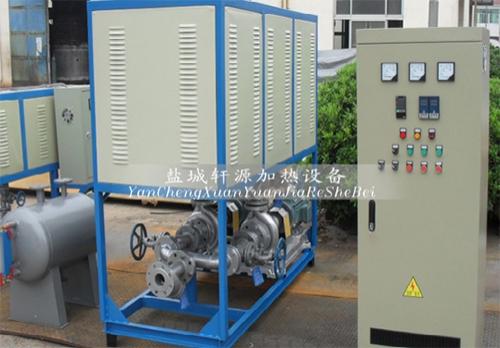 双泵导热油炉